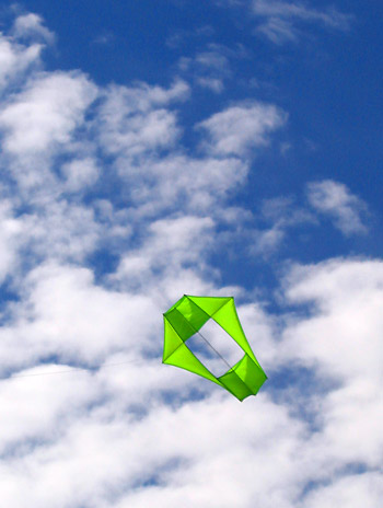 Conyne kite over Tallong.jpg