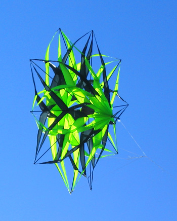 1.5m wide double star kite