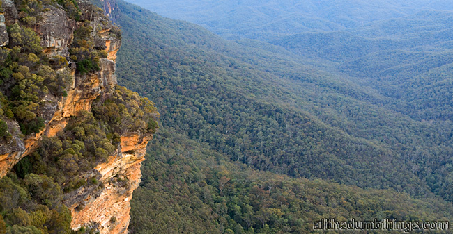 The Blue Mountains National Park is vast.
