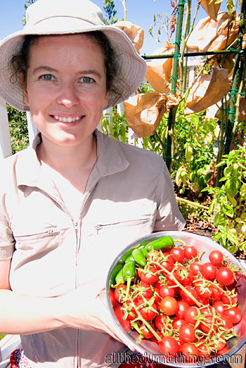 Engogirl with delicious home grown cherry tomatoes and chilles