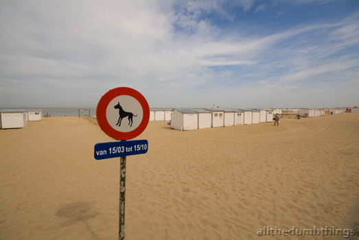 there will be no great danes on this beach